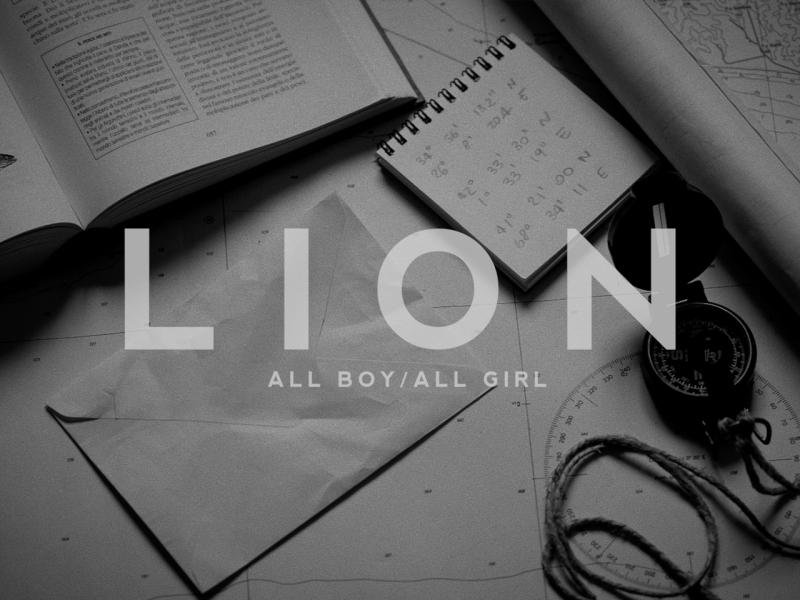 Lion_Sara Montironi_snapshot